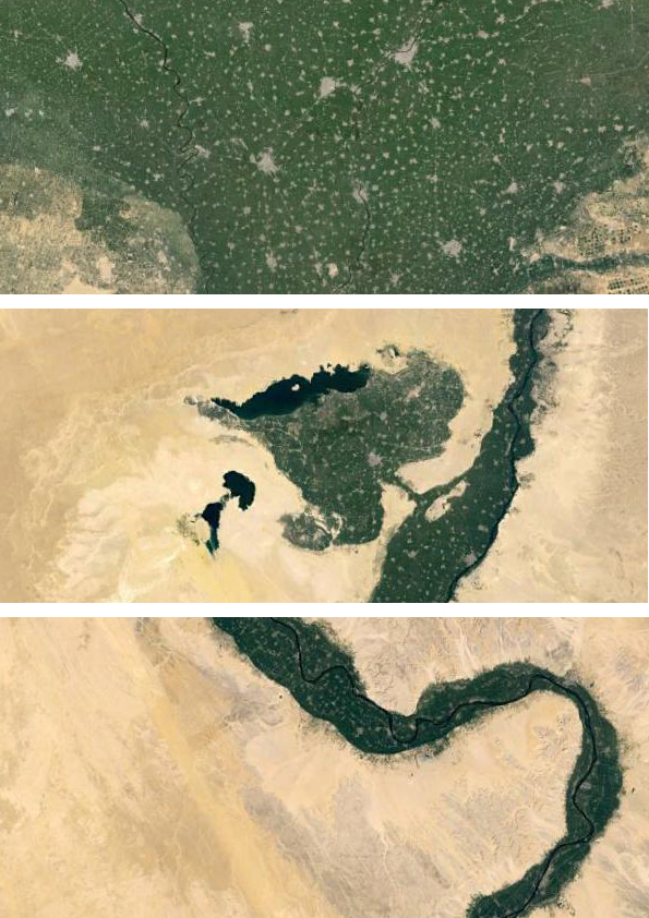 "Fig. 3 Aerial sections of Egypt's Nile Valley and Delta show ""rhizomatic"" socio-ecological complexity of social, urban, technological and environmental networks that cannot be simply relocated to remote and disconnected desert areas [Image source: Google Earth, 2015 – compiled by author; read more on large complex urban systems by Anil Bawa-Cavia at Urbagram: Microplexes, 2010]"